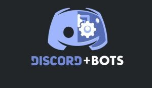 how to make a discord music bot